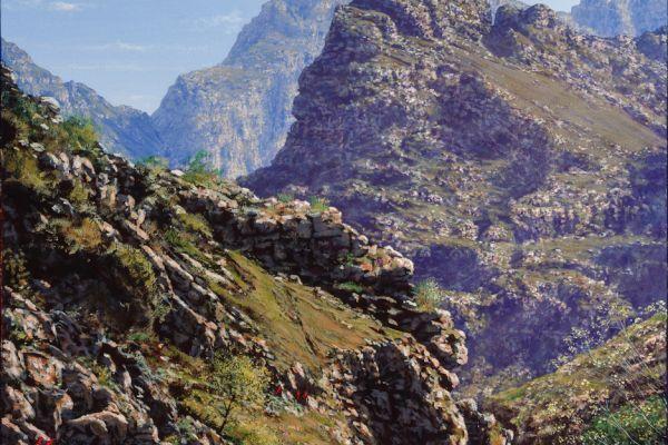 ac0029-cape-mountain-streamA6D9B693-0D85-F901-C7C5-FB881E9DEE86.jpg
