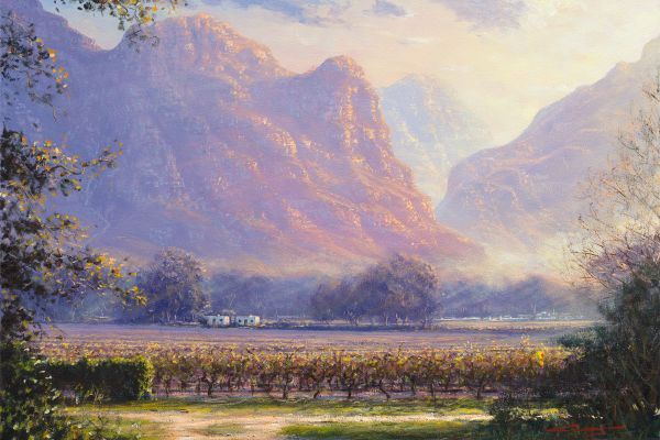 ac0054-worcester-vineyardsDE943CEE-D56A-C106-A525-750621F053BA.jpg