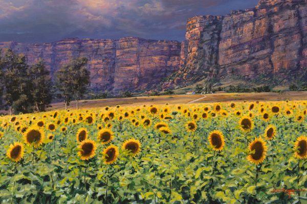 ac0087-golden-gate-sunflowers84786F11-DA13-18EC-E918-9350B52BBED2.jpg
