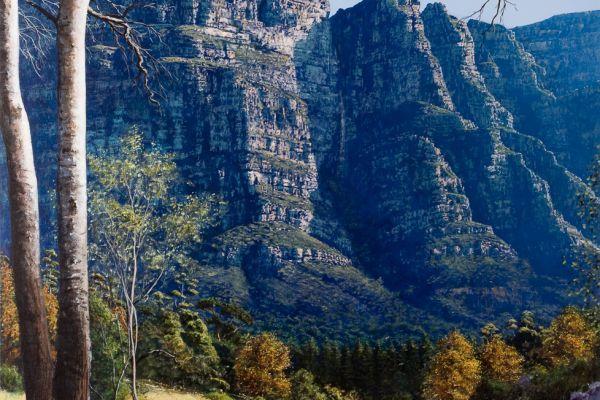 ac0097-newlands-forest1819A4D2-EFD0-115C-908E-FA8EC03BD5A2.jpg