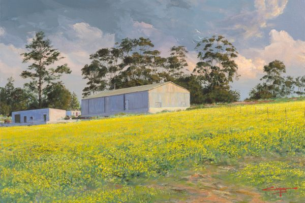 Canola fields, Overberg painting