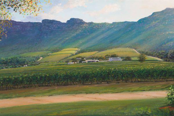 Cape Point  vineyards, Noordhoek painting