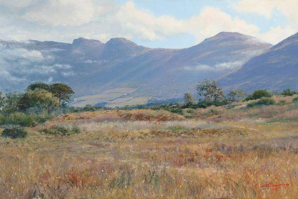 Grassy meadow, Noordhoek painting