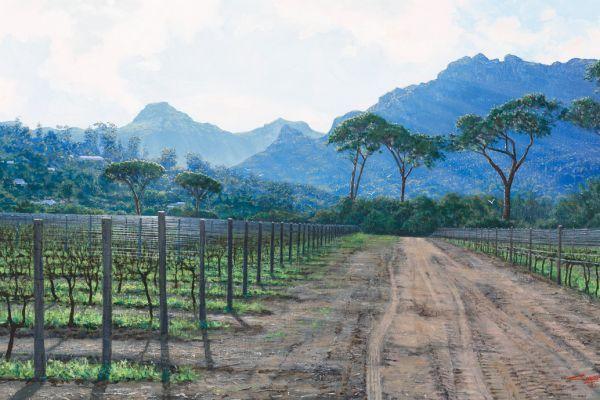 Winter Vines, Groot Constantia painting
